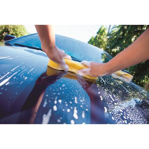 detergente lavaggio manuale prelavaggio veicoli